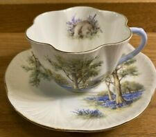 Rare Shelley Bluebell Wood Teacup and Saucer from 1930's