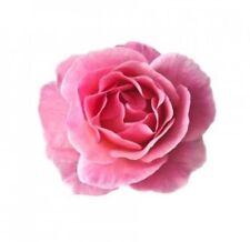 Rose Damascena Absolute Essential Oil 5ml 100% Pure