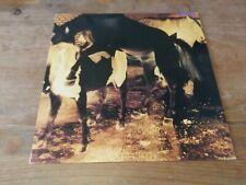 "Colourbox - Shotgun - Original UK 12"" Single (4AD) (1983)"