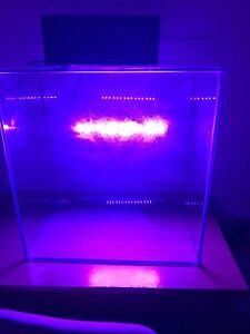 Aqurium Tank For Fresh Water Or Tropical Fish, Dispatched By Other 48hrs Couri