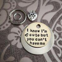 I know I'm cute dog tag - handmade stamped pet tags dog cat PoshTags