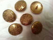 """1"""" LION & SHIELD DOMED METAL BRITISH Vintage Inspired  Buttons (6 pc) GOLD Tone"""