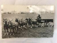"Vintage Post Card Canada O'Keefe's Pilsener Lager Beer Toronto, Ontario 5.5x3.5"""