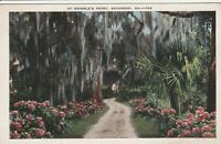 (V)  Savannah, GA - Scenic Pathway and Grounds at Grimble's Point
