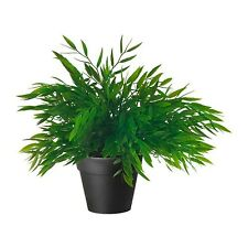 Artificial Potted Plant Bamboo Fake Grass 28 cm Height Indoor Outdoor Pot - NEW