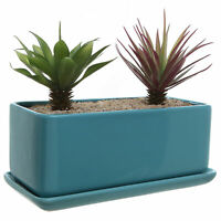 Nattol 8 5 Inch Succulent Planter In Rectangle Window Box