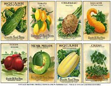 Seed Packet Reproduction, Flower & Vegetable Garden Art Decor, 1 Sticker Sheet