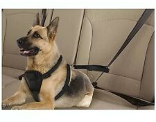 World Pet Large Seatbelt Harness 45-75 lbs Black