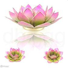 Lotus Capiz Muschel grün rosa Verlauf mit Goldrand Größe M Teelichthalter
