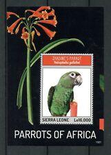 Sierra Leone 2013 MNH Parrots of Africa 1v S/S Birds Jardine's Parrot Stamps