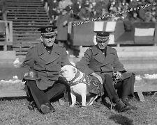 Photograph Gen Lejeune &  Eli Cole Quantico Marine Game Dog Sgt.Jiggs 1925  8x10