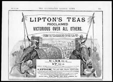 1892 Antique Print - ADVERTISING Liptons Teas Victorious Elephants Gardens (38)