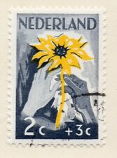 Netherlands 1948-49 Early Issue Fine Used 2c. NW-11735