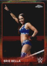 Wrestling Trading Cards & Single Season 2015