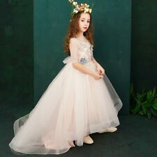 Holy Communion Trailing Ball Gown Flower Girl Dresses Wedding Appliques Dress