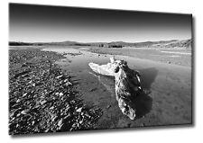 Leinwand Bild Schwarzweiß Ansel Adams Stil Landschaft