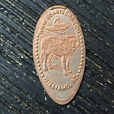 Coyote Williams Az Smashed pressed elongated penny P1496