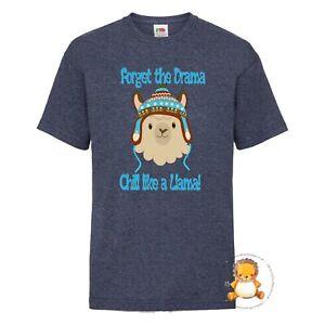 Kids Llama Drama T-shirt - gift, present, trend, personalised, boys, winter