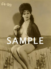 1960's BUSTY BRUNETTE VINTAGE NUDE PHOTO 8. 5 X 11 GLOSSY QUALITY GUARANTEED!!
