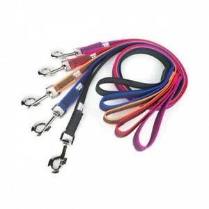 Julius-K9 Color & Gray Dog Puppy Lead with Handle Training Walking Strong Leash