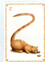 French Postcard Ginger Cat Kitten Snail Alphabet Letter Z Name Surname Card