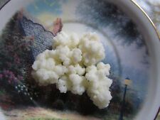 1 tbs Organic Milk Kefir Grains Tibetan Milk Mushroom - Probiotic+ instructions