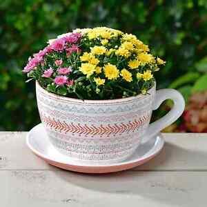 Giant Ceramic Teacup Planter With Saucer Garden Patio Outdoor Planting Decor