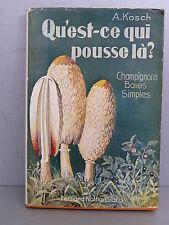 Kosch Qu'est ce qui pousse là Champignons baies simples mycologie naturaliste.