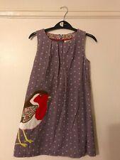 Mini  Girls Robin dress age 7-8