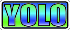 YOLO Sticker Decal  Sticker 4""