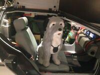 Figur EINSTEIN Hund von Doc Brown für DeLorean Zurück in die Zunkuft BTTF 1:8