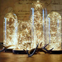 Glass Dome Bell Jar Decorative Cloche Display Wooden Base with Fairy LED Lights