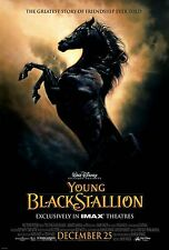 YOUNG BLACK STALLION original  2003 DISNEY movie poster one sheet rolled