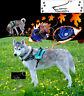 Green Dog Harness S M L XL padded extra Labrador Husky Malamute German Shepherd