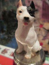 Pit Bull Terrier White ~ Wine Stopper