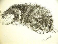 Lucy Dawson KEESHOUND on the Watch 1937 Vintage Dog Print Matted