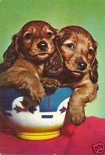 Original Vintage 1960s-70s Large German PC- Dog- Spaniel Puppies Inside a Bowl