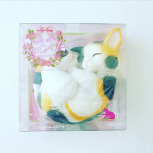 Ibloom Squishy We Are the Cat Curled TAMA Kitten Squishy NEW