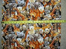 Wild Animals Polar Bear Otter Giraffe Monkey Elephant Raccoon 3964 TT fabric