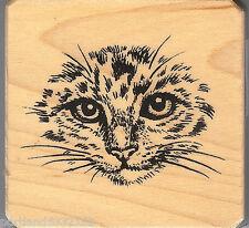 Inkadinkado Rubber Stamp 90917-M  Cat Face, Nature  S12