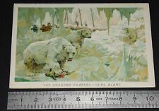 CHROMO BON-POINT ECOLE 1900-1910 LES GRANDES CHASSES OURS BLANC POLE POLAIRE