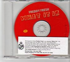 (FM646) Freddy Fresh, What It Is - 1999 DJ CD