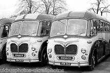 Cresta Coaches, Wimbledon JXM562 & JXM563 Maudslay Bus Photo Ref P305