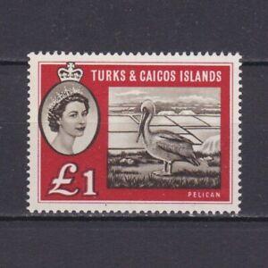 TURKS & CAICOS ISLANDS 1960, SG# 253, CV £50, Pelican, birds, MNH