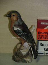 +# A015583_21 Goebel Archiv Muster Vogel Bird Fink Buchfink Chaffinch 38-127