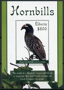 Liberia Birds on Stamps 2019 MNH Hornbills White-Crested Hornbill 1v S/S