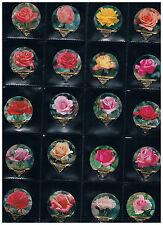 KRD CH Serie  Nr. 72 A Rosen Riegel