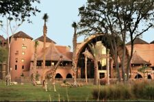 Disney's Animal Kingdom Lodge Jambo House 3 Days / 2 Nights Vacation 9/8 - 9/10