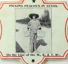 1904 Katy Railroad Poster Stamp Sticker World's Fair St. Louis Texas Peaches F94