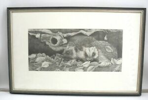 Original Pencil Drawing of Hedgehogs Signed and Framed . OAFB275JA
